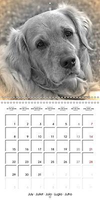 Retro Dogs (Wall Calendar 2019 300 × 300 mm Square) - Produktdetailbild 7