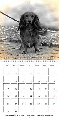 Retro Dogs (Wall Calendar 2019 300 × 300 mm Square) - Produktdetailbild 12