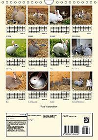 """""""Rex"""" Kaninchen (Wandkalender 2019 DIN A4 hoch) - Produktdetailbild 13"""
