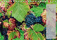 Rheingau - Spätburgunder Trauben (Tischkalender 2019 DIN A5 quer) - Produktdetailbild 7