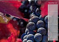 Rheingau - Spätburgunder Trauben (Wandkalender 2019 DIN A3 quer) - Produktdetailbild 13