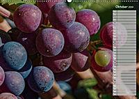 Rheingau - Spätburgunder Trauben (Wandkalender 2019 DIN A2 quer) - Produktdetailbild 10