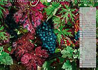 Rheingau - Spätburgunder Trauben (Wandkalender 2019 DIN A3 quer) - Produktdetailbild 5