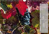 Rheingau - Spätburgunder Trauben (Wandkalender 2019 DIN A4 quer) - Produktdetailbild 3