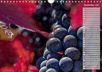 Rheingau - Spätburgunder Trauben (Wandkalender 2019 DIN A4 quer) - Produktdetailbild 12