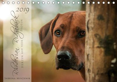 Rhodesian Ridgeback - Herzen auf vier Pfoten (Tischkalender 2019 DIN A5 quer), Sabrina Mischnik