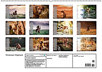 Rhodesian Ridgeback - Herzen auf vier Pfoten (Wandkalender 2019 DIN A2 quer) - Produktdetailbild 13