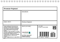 Rhodesian Ridgeback - Herzen auf vier Pfoten (Tischkalender 2019 DIN A5 quer) - Produktdetailbild 13