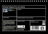 Rhodesian Ridgeback Power aus Südafrika (Tischkalender 2019 DIN A5 quer) - Produktdetailbild 13