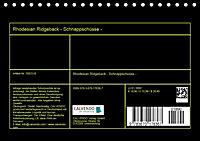 Rhodesian Ridgeback - Schnappschüsse - (Tischkalender 2019 DIN A5 quer) - Produktdetailbild 13
