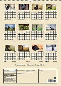 Riesenschnauzer - Riesen mit Herz und Seele (Wandkalender 2019 DIN A2 hoch) - Produktdetailbild 3