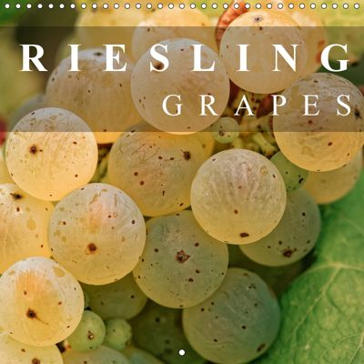 Riesling Grapes (Wall Calendar 2019 300 × 300 mm Square), Dieter Meyer