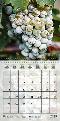 Riesling Grapes (Wall Calendar 2019 300 × 300 mm Square) - Produktdetailbild 2
