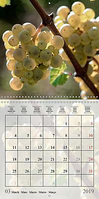 Riesling Grapes (Wall Calendar 2019 300 × 300 mm Square) - Produktdetailbild 3