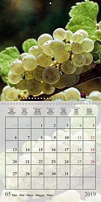 Riesling Grapes (Wall Calendar 2019 300 × 300 mm Square) - Produktdetailbild 5