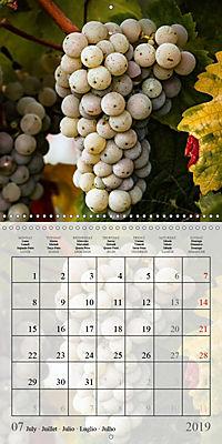Riesling Grapes (Wall Calendar 2019 300 × 300 mm Square) - Produktdetailbild 7