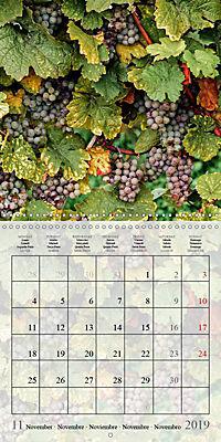 Riesling Grapes (Wall Calendar 2019 300 × 300 mm Square) - Produktdetailbild 11