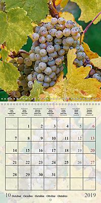 Riesling Grapes (Wall Calendar 2019 300 × 300 mm Square) - Produktdetailbild 10