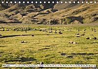 Robben - Halbstarke an Land (Tischkalender 2019 DIN A5 quer) - Produktdetailbild 3