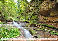 Romantisches Neckartal (Wandkalender 2019 DIN A4 quer) - Produktdetailbild 4