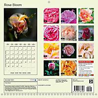 Rose Bloom (Wall Calendar 2019 300 × 300 mm Square) - Produktdetailbild 13