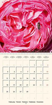 Rose Bloom (Wall Calendar 2019 300 × 300 mm Square) - Produktdetailbild 2