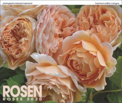 Rosen 2019, Baback Haschemi