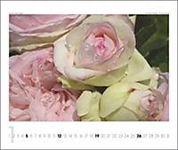 Rosen 2019 - Produktdetailbild 1