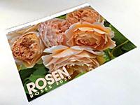 Rosen 2019 - Produktdetailbild 13