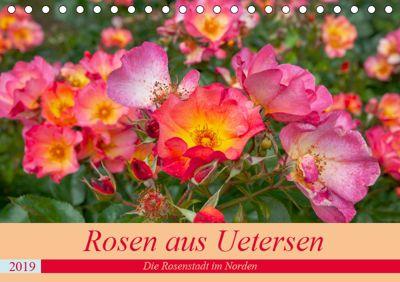 Rosen aus Uetersen (Tischkalender 2019 DIN A5 quer), Carmen Steiner / Matthias Konrad