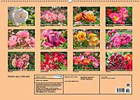 Rosen aus Uetersen (Wandkalender 2019 DIN A2 quer) - Produktdetailbild 13