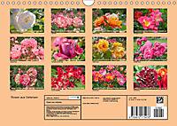 Rosen aus Uetersen (Wandkalender 2019 DIN A4 quer) - Produktdetailbild 13