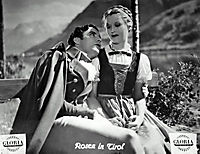 Rosen in Tirol - Produktdetailbild 6