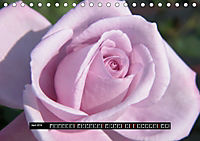 Rosen - Parade (Tischkalender 2019 DIN A5 quer) - Produktdetailbild 4
