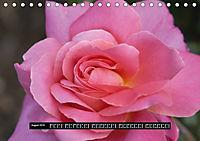 Rosen - Parade (Tischkalender 2019 DIN A5 quer) - Produktdetailbild 8