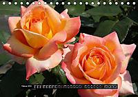 Rosen - Parade (Tischkalender 2019 DIN A5 quer) - Produktdetailbild 2