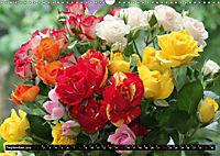 Rosen, Rosen ... arrangiert und am Strauch (Wandkalender 2019 DIN A3 quer) - Produktdetailbild 9