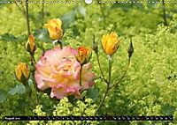 Rosen, Rosen ... arrangiert und am Strauch (Wandkalender 2019 DIN A3 quer) - Produktdetailbild 8