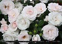 Rosen, Rosen ... arrangiert und am Strauch (Wandkalender 2019 DIN A3 quer) - Produktdetailbild 12