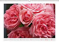 Rosen Schleswig-Holsteins (Wandkalender 2019 DIN A3 quer) - Produktdetailbild 12