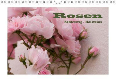 Rosen Schleswig-Holsteins (Wandkalender 2019 DIN A4 quer), Antje Kügler