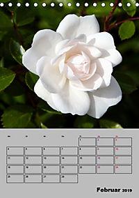 Rosen - Symbol der Liebe und Verehrung (Tischkalender 2019 DIN A5 hoch) - Produktdetailbild 2