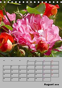 Rosen - Symbol der Liebe und Verehrung (Tischkalender 2019 DIN A5 hoch) - Produktdetailbild 8