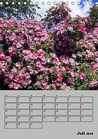 Rosen - Symbol der Liebe und Verehrung (Tischkalender 2019 DIN A5 hoch) - Produktdetailbild 7