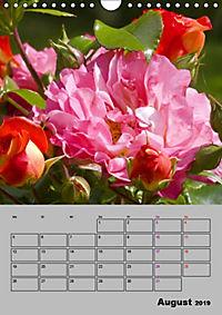 Rosen - Symbol der Liebe und Verehrung (Wandkalender 2019 DIN A4 hoch) - Produktdetailbild 8