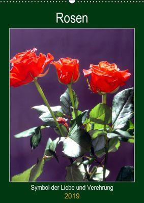Rosen - Symbol der Liebe und Verehrung (Wandkalender 2019 DIN A2 hoch), Lothar Reupert