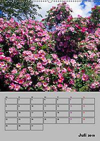 Rosen - Symbol der Liebe und Verehrung (Wandkalender 2019 DIN A2 hoch) - Produktdetailbild 7