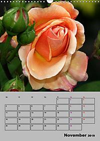 Rosen - Symbol der Liebe und Verehrung (Wandkalender 2019 DIN A3 hoch) - Produktdetailbild 11