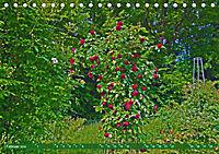 Rosengarten auf dem Beutig (Tischkalender 2019 DIN A5 quer) - Produktdetailbild 2