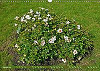 Rosengarten auf dem Beutig (Wandkalender 2019 DIN A3 quer) - Produktdetailbild 1